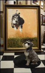 the Adventures of Benji, the Gallery Dog
